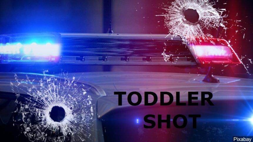 TODDLER SHOT GFX