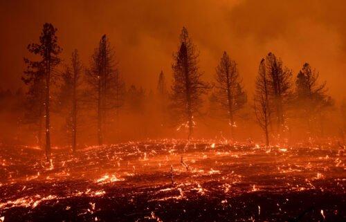 Embers blow across a field as the Sugar Fire