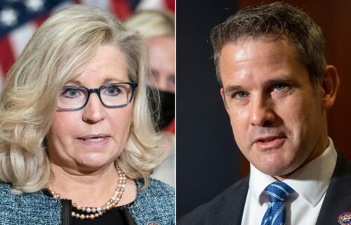 Reps Liz Cheney and Adam Kinzinger are looking to defend their seats.